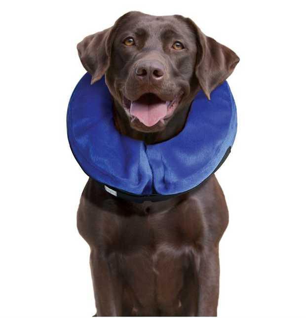 KONG Cloud Soft Elizabethan Cat and Dog Collar  [Size: Large]