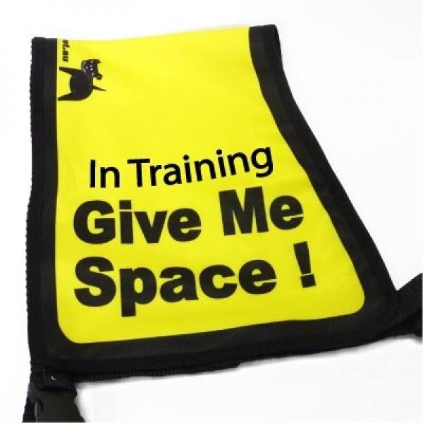 "Black Dog ""Give Me Space"" Awareness Vest for Dogs - Small"