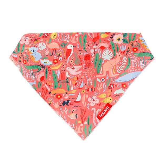 Hot Dog Cotton Bandana Dog or Cat Scarf - Down Under Coral