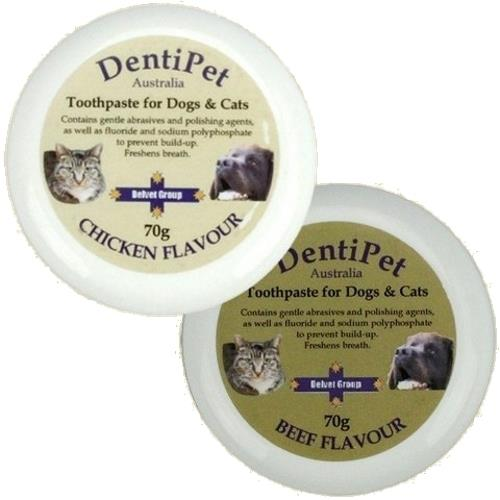 Dentipet Toothpaste for your Cat or Dog with BONUS Toothbrush [Flavour: Chicken]