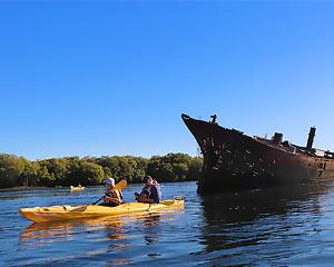 Explore the wonderful world on mangroves just 25 minutes from Adelaide. Discover shipwrecks and paddle...