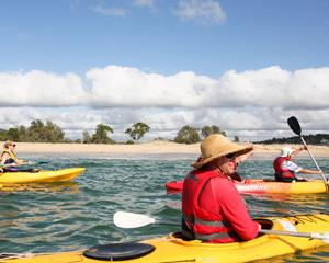 This popular 3 hour tour of Bundeena beaches and the Royal National Park provides the perfect vantage...