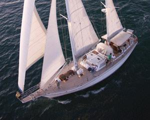 Experience the thrill of sailing the Indian Ocean to Rottnest Island, home of the Quokka and a variety...