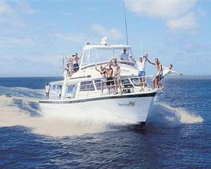 This is the best value snorkeling day trip to the Outer Great Barrier Reef. See spectacular coral...