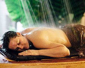 This is a unique opportunity to stay overnight in the Daintree Rainforest. Romantic, secluded, easily...