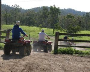 This half day ATV (All-Terrain Vehicle) quad bike adventure in Melbourne will blow your socks off! We...