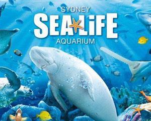 Walk under water at Sydney Aquarium and go on an amazing journey through Australias unique freshwater...