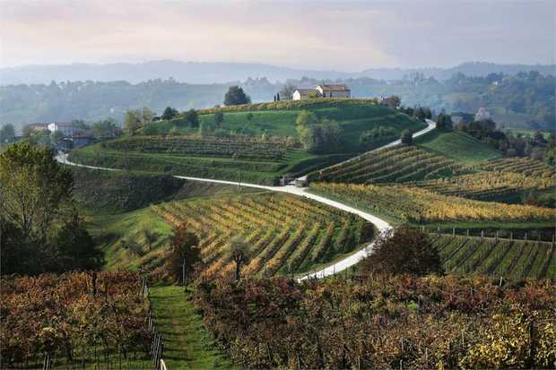 Cycle through the picturesque vine-covered hills of Italy's Prosecco region on an 8-day adventure.