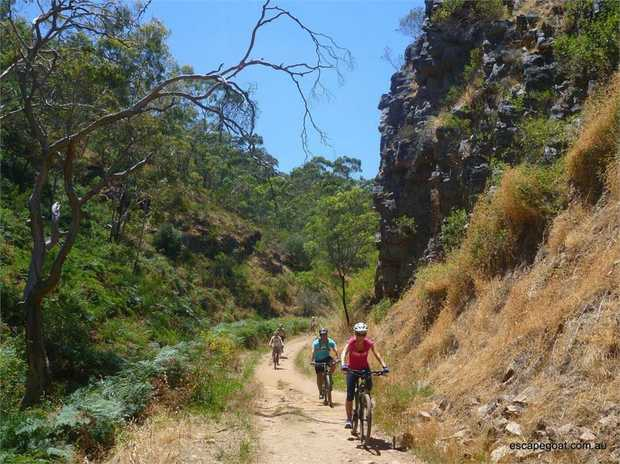 Adelaide's popular bike day tour catering for all abilities with a 100% Wild Koala Guarantee! Glide...