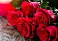 TOYE, Esme Muriel Born 3rd Nov. 1937 Passed away 1st Sept. 2013 Aged 75 Years  Beloved Wife of...