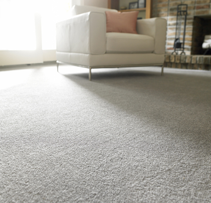 Carpet Services.   Carpets restretched, repaired, over 40 years in business. All work...
