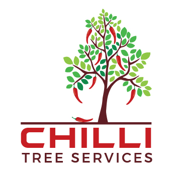 TREE REMOVAL & VEGETATION MGMT   TREE/PALM REMOVING & TRIMMING, SPIKE, CLIMBING, ROPE...