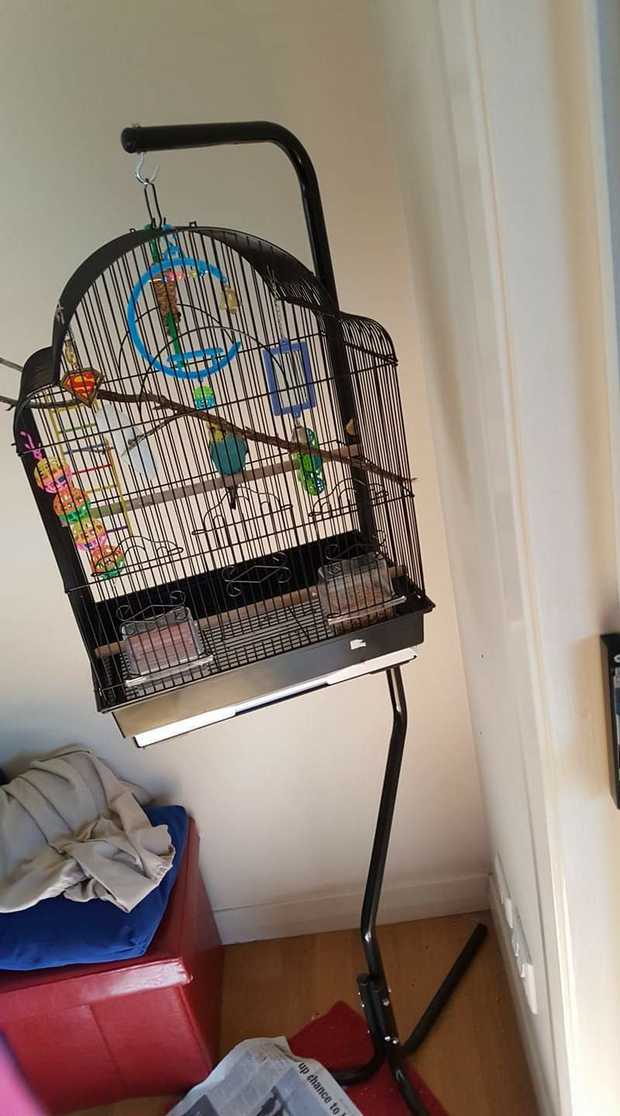 I have a Birdcage that is suitable for small birds it comes with to purchase water and feeds troughs...