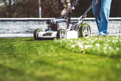 Ride On & All Lawn Mowing Services    Lawn & Weed Sprays  reliable, efficient & friendly.