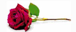 GIATRAKOS. — Christos (Chris)   The Funeral Service for Christos (Chris) Giatrakos will be...