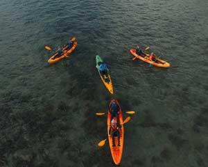 Departing from the south end of the stunning Palm Cove, kayak to the beautiful Double Island. Paddle...