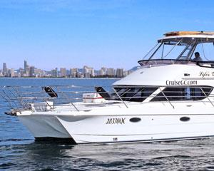 Board our spacious, modern luxury flybridge cruising catamaran for a spectacular 2hr whale watching...