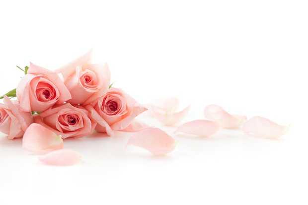 DELANY, Kathleen Angela Passed away peacefully in Perth WA November 11, 2019 Wife of Richard...