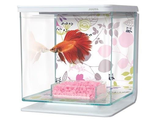 Animals & Pet Supplies > Pet Supplies > Fish Supplies > Aquariums
