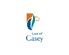 CITY OF CASEY LOCAL LAW (AMENDMENT)