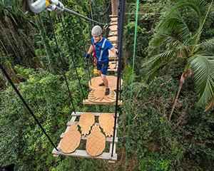 Take on 100 sky-high challenges and 12 ziplines stretched across eight acres of pristine rainforest.