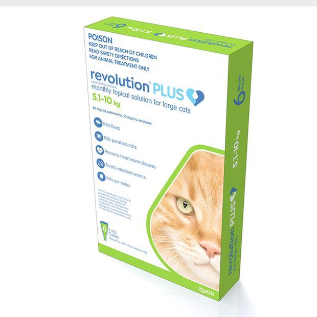 revolution plus green large cat  3 pack | Revolution cat Flea&Tick Control | pet supplies| Product...
