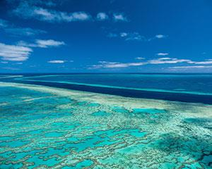 It's a Whitsunday must-do: a day trip to The Great Barrier Reef for a fun day off an amazing pontoon!
