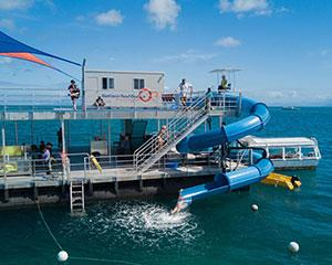 Discover the wonders of the Great Barrier Reef on this full day adventure tour. Departing from Cairns...