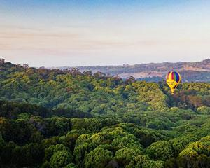 Experience the exhilaration of a sunrise hot air balloon flight over the beautiful Byron Bay region!