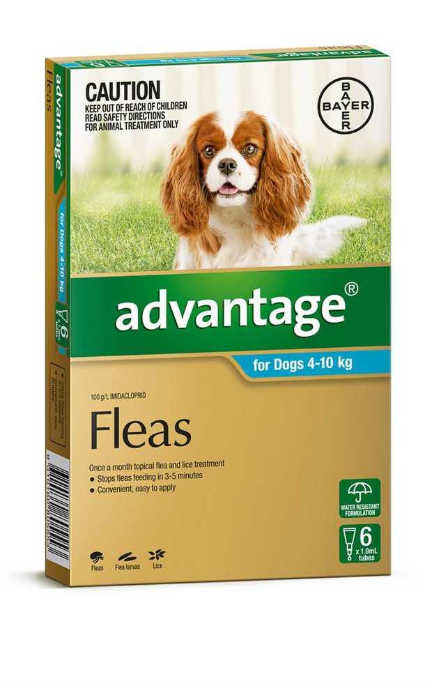 Advantage Flea Control for Dogs 4-10kg - 6-Pack