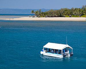 Explore the incredible coral cays of the Low Isles on this half day tour departing from Port Douglas.