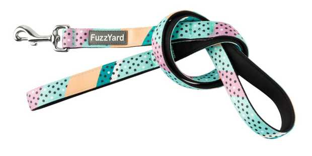 Let your buddy strut out in style with a little splash of fun with the FuzzYard Footloose Teal Dog...