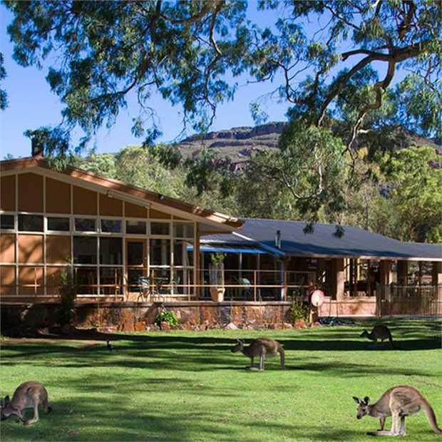 Experience Australia's rugged outback at Wilpena Pound Resort — the only resort in the spectacular...