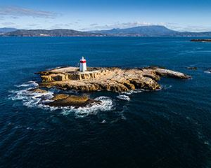 "Spectacular Cruise from Hobart to Bruny Island aboard ""Wild Thing"". Enjoy a glass of bubbles and..."