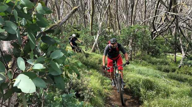 Spend a long weekend riding Australia's original mountain bike destination; Mount Buller, on a 3 day...