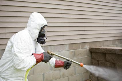NATRASPRAY PEST CONTROL   The Enviromental Way   Termites -Rodents - Cockroaches ...