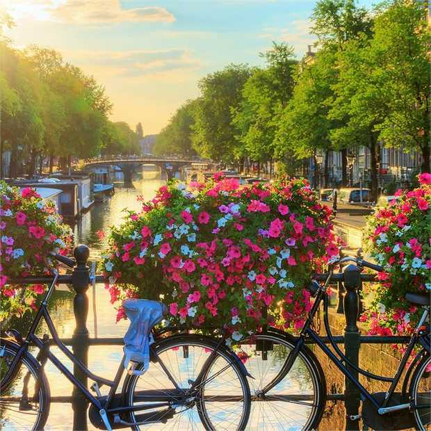 Taste the essence of Europe as you embark on an eight-day adventure taking you through seven countries...