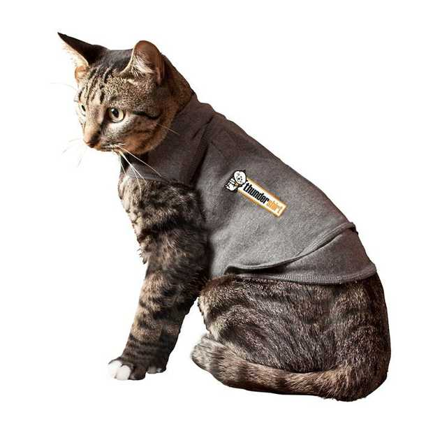 Thundershirt Anxiety & Calming Vest for Cats [Size: Large]