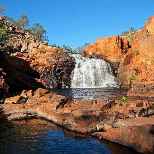 Discover Australia's world-famous, iconic wildlife and incredible flora and fauna on a magical...