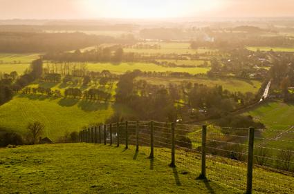Post & Rail Fencing  Farm Fencing / Repair  Orchard / Vineyard...