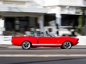 Take to the streets in a GT500 Mustang Convertible! This classic muscle car has four seats, so you can...