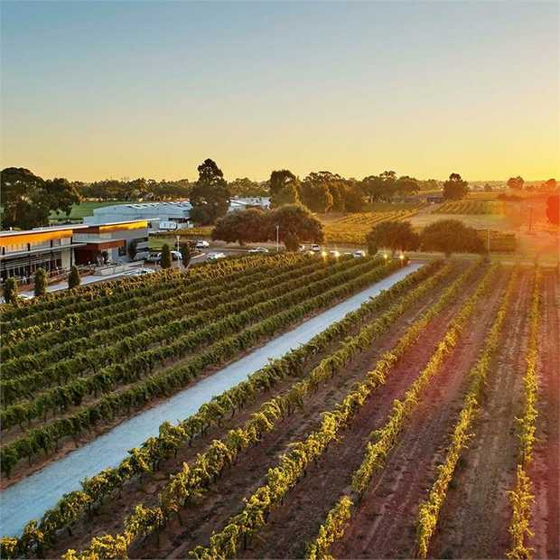 Discover the magic of Swan Valley — Western Australia's oldest wine region — on the banks of the Swan...