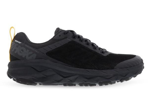 The Challenger ATR 5 GORE-TEX is fast, light and versatile shoe to take you from the trail to the road...