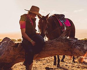 Fall in love with the beautiful Jarrahdale bush and farmland on the back of a magnificent Australian...