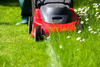 Mowing - Gardening & Handyman Services