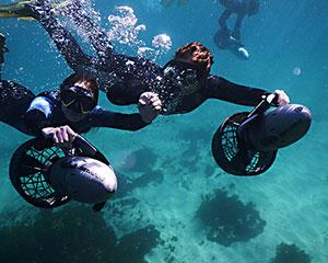 Enjoy an exhilarating 90 minute private guided underwater scooter tour in Gordons Bay, exploring the...