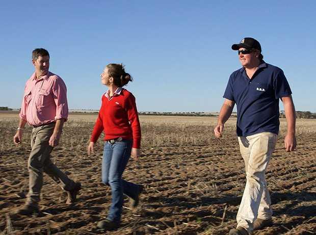 Elders Real Estate | FARM SUPPLIES SALES REPRESENTATIVE  Townsville, QLD   Elders has played a key...