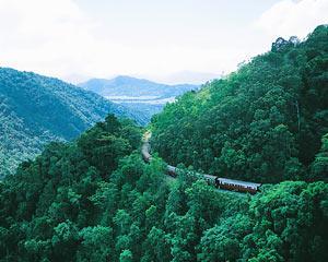 Enjoy views of a world heritage rainforest on the Kuranda Scenic Railway than an exhilarating 1.5hrs...