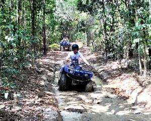 1.5hrs (approx.) ATV/Quad Bike adventure through lush tropical rainforest & tranquil creek beds. Enjoy...