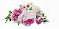 Loving Memory of Gladys (Margaret) Stephens   28/03/42 – 21/04/10   We've shared...